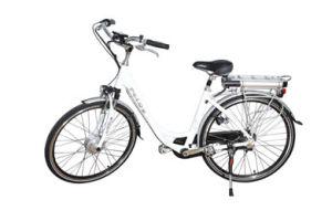 Electric Bike (HSM-202) for European