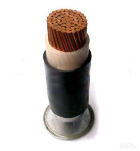 Single Core PVC Insulated PVC Sheath Cable pictures & photos