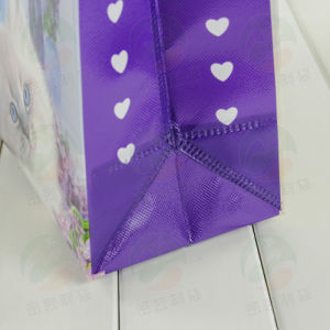 Non Woven Shopping Bag with 3D Customised Print (MY-027) pictures & photos