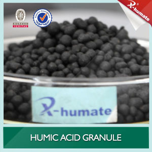 Humic Acid Compound Granular pictures & photos
