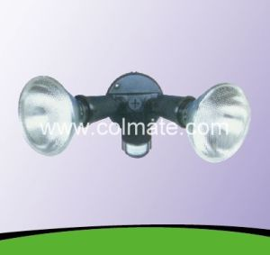 Spot Light With PIR Detector(Photocell) pictures & photos