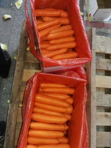2015 New Crop Fresh Chinese Carrot (S grade) pictures & photos