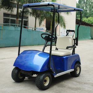China CE Approve Electric Golf Carts for One Person (DG-C1) pictures & photos