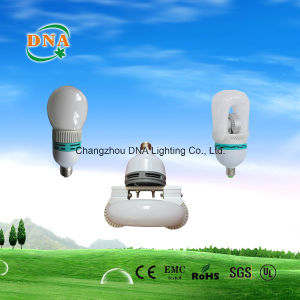 Self-Ballasted Induction Bulb