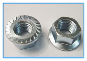 Plain Stinless Steel Hex Flange Nut (DIN6923) pictures & photos