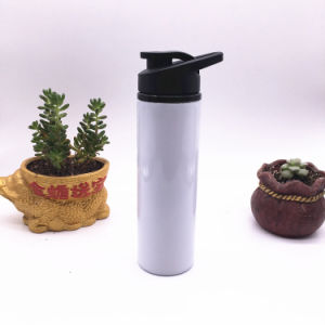 500ml Stainless Steel Wide Mouth Sports Water Bottle (SH-ST16) pictures & photos