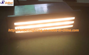 Hot Sale 6W LED Wall Light in IP55 Made of 316 Stainless Steel pictures & photos