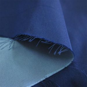 Double Layer Yarn Dyed Imitation Memory Fabric pictures & photos