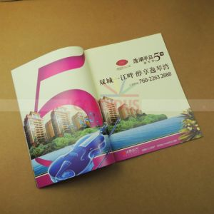 Cheap Magazine Printing Book Catalog Brochure Printing pictures & photos