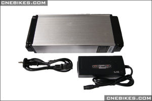 48V 10ah Rack Type Electric Battery for Any Bike pictures & photos