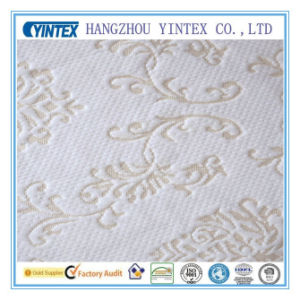 Polyester Fabric Jacquard /Knitted (200-500GSM) pictures & photos
