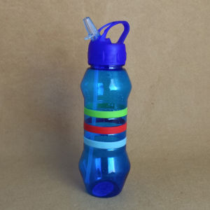 Plastic Water Bottle with Straw pictures & photos