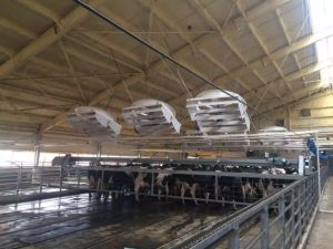 "72"" Positive Presure Fan Dairy Barn Equipment Ventilation Fan pictures & photos"