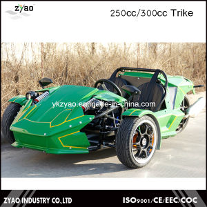 300cc Ztr Trike Motorcycle pictures & photos