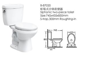 New Style Two-Pieces Washdown Bathroom Toilet (87020) pictures & photos