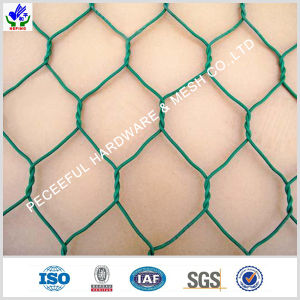 Hot Sale Gabion Mattress (HPGB-0521) pictures & photos