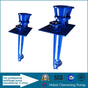 Cm Chinese Famous Brand Cheap Acid Water Resistant Sump Pumps pictures & photos