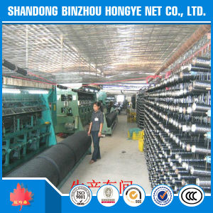 HDPE+UV Shade Sail pictures & photos