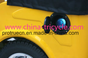 China Rickshaw /Passegner Tricycle for 6 Person (DTR-11B) pictures & photos