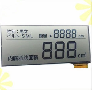 Segment Customized LCD Display Panel pictures & photos