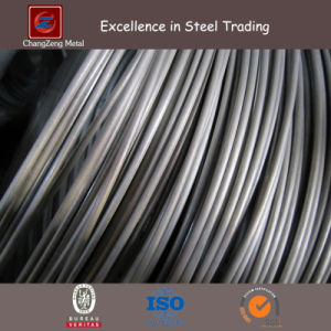 Spring Stainless Steel Wire (CZ-W48) pictures & photos