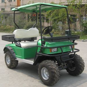 Ce Approved 2 Seater Electric Sports Utility Vehicle (DH-C2) pictures & photos