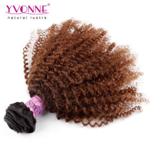 Afro Kinky Brazilian Ombre Human Hair Extension pictures & photos
