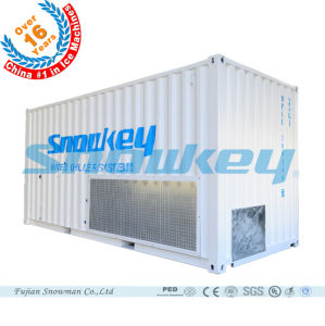 Snowkey Newest Design Best Quality Water Chiller pictures & photos