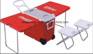 Portable Thermal Plastic Cooler Box pictures & photos