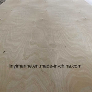 Russia Birch Plywood Popla Core for USA Market pictures & photos