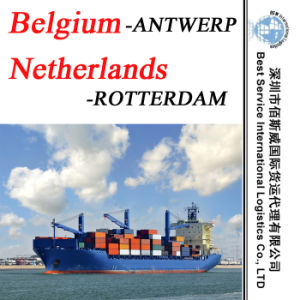 "Sea Freight Shipping Agent Antwerp (Belgium) , Rotterdam (Netherlands) -20""/40"" pictures & photos"