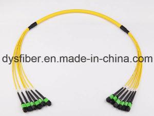 40g 12 Core MPO-MPO Sm Elite Insertion Loss Fiber Optical Patch Cord pictures & photos