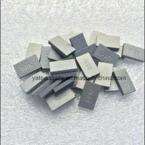 Tungsten Carbide Tip SS10 pictures & photos