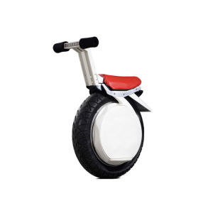 Powerful 17 Inch One Wheel Electric Motorcycle pictures & photos