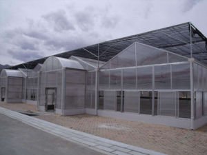 UV Polycarbonate Aluminum Greenhouse for Garden