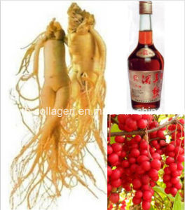 Gensing Top Ginseng Schisandra Wine, Enhance Immunity, Enhance Memory,Promoting Meridian and Blood, Anticancer,Pure Natural Aphrodisia Health Food, Prolong Life pictures & photos