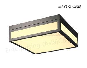 Et21 Dark Grey Square Glass Ceiling Light LED Lamp pictures & photos
