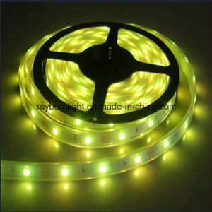 High Quality Waterproof SMD5050 60LEDs/M 5meters Flexible LED Strip Light pictures & photos