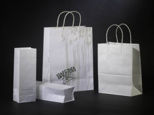 Craft Paper Shopping Bags with Handle pictures & photos