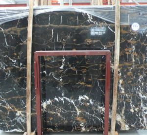 Black Gold Flower Granite for Countertop /Kitchen Countertop pictures & photos