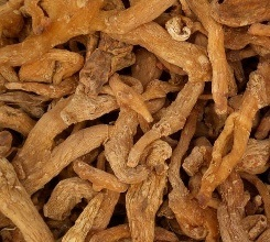 Factory Supply Directly 100% Natural Solomonseal Rhizome P. E. pictures & photos