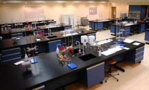 Used School Furniture Chemical Resistant Lab Furniture pictures & photos
