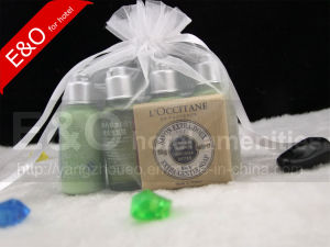 Hotel Shampoo / Bath Gel / Body Lotion / Conditioner 35ml pictures & photos