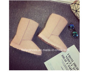 Warm Women Suede Leisure Snow Boots for Winter (FF-1) pictures & photos