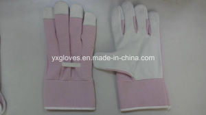 Leather Glove-Cheap Leather Glove-Kids Glove-Children Glove-Lady Glove-Work Glove pictures & photos