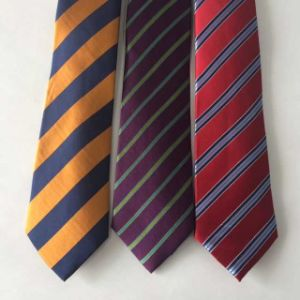 New Striped Design Woven Silk Ties pictures & photos