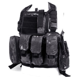 Anbison-Sports Fsbe Lbv Load Bearing Molle Assault Vest pictures & photos