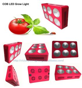 R: B 3: 1 4; 1 7: 1 Full Spectrum COB 430W LED Growlight pictures & photos