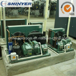 2-4HP Air-Cooled Condensing Units with Semi-Hermetic Bitzer Compressors Low Temperature pictures & photos