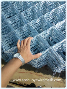 Electrical Galvanized Welded Wire Mesh Chain Link Fence Net Panel pictures & photos